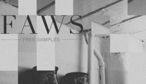 faws-703x703