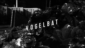 vogelbat-ovl-cover-with-bigger-text-smaller