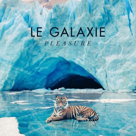 PLEASURE_tiger-940x940