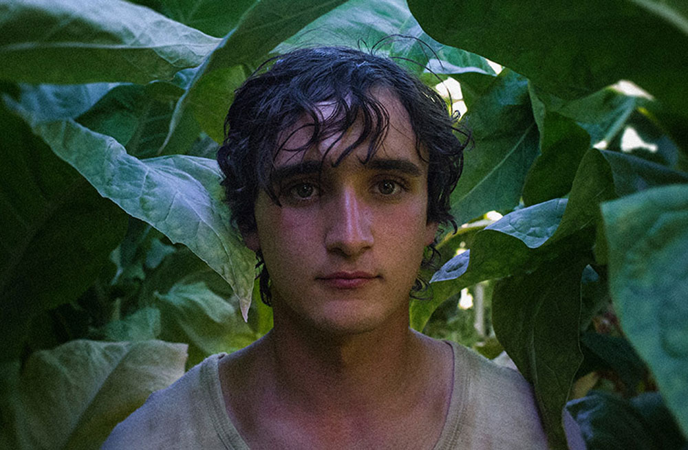 HappyAsLazzaro