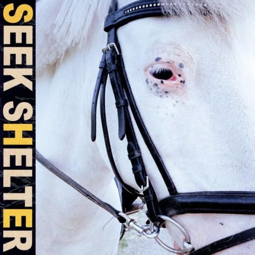 Iceage-Seek-Shelter